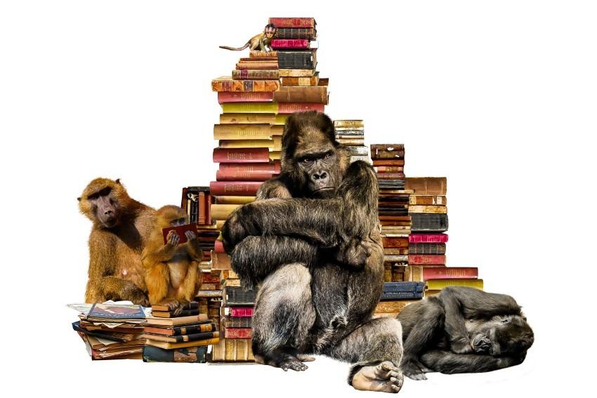 独学で文章力を上げる!ライティングにおすすめの本をご紹介